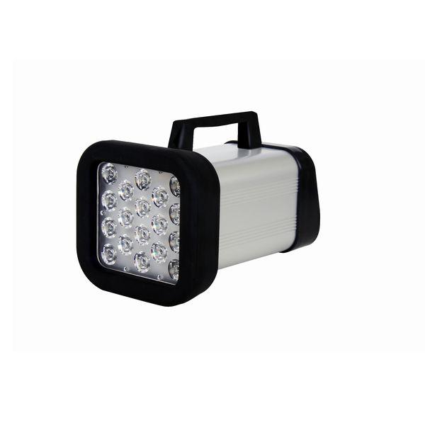 日本電産シンポ:LEDストロボスコープ(充電タイプ) DT-365