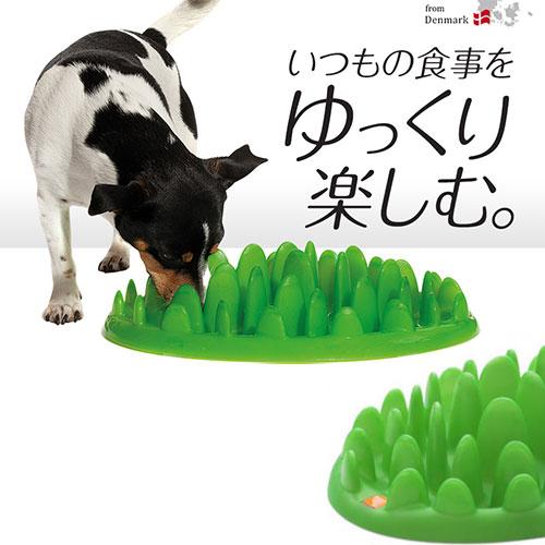 買い取り わんちゃんの早食い防止に 価格 探索 狩猟本能を呼び起こして楽しい食事に 愛犬用 グリーンフィーダー