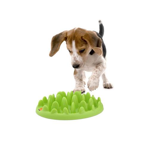 わんちゃんの早食い防止に 数量は多 探索 狩猟本能を呼び起こして楽しい食事に グリーンフィーダー Mini セットアップ 愛犬用