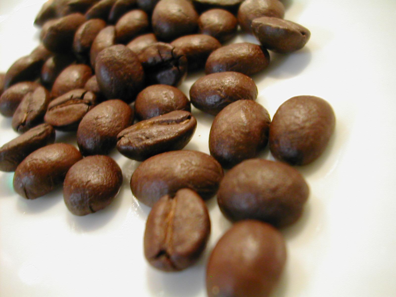 Set ■ Big 1.5 kg ■ coffee beans each 500 g × 3 species repeat OK! -Granfasarsbrend 500 g Guatemala retana plantation 500 g, fresh coffee beans 500 g