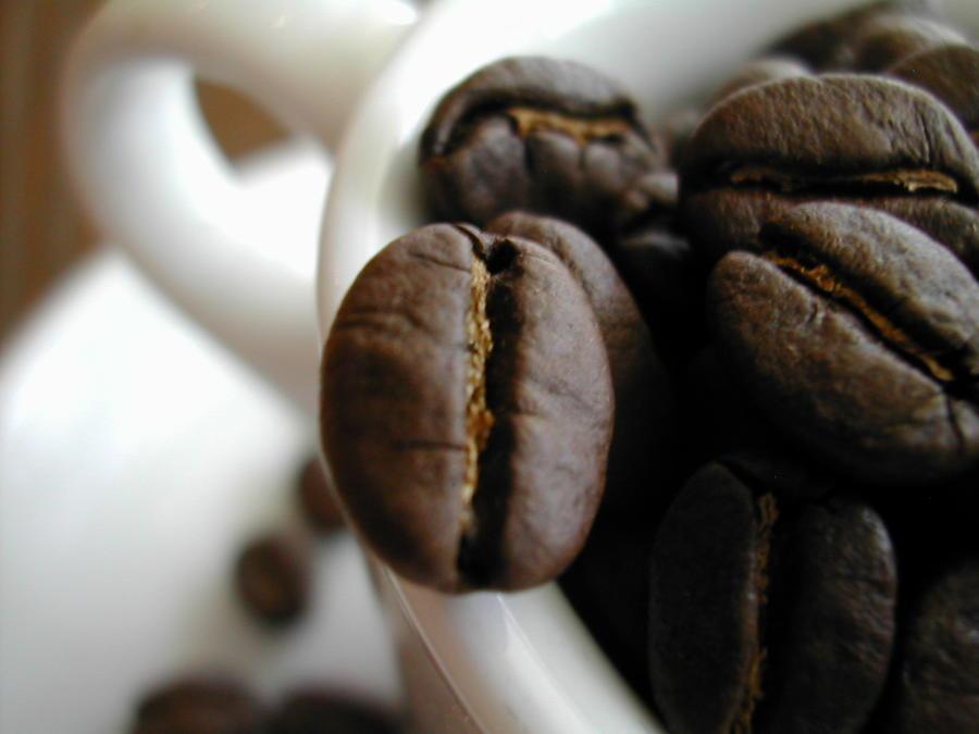 日本産 コーヒーマーケット1番人気の コーヒー豆 セット 送料無料 お試しセット■Big 500g ハイクオリティ マイクロロット500g選べるコーヒー豆 1.5kg■スペシャルティー ナリーニョ 各500g×3種グランファザーズブレンド500gコロンビア