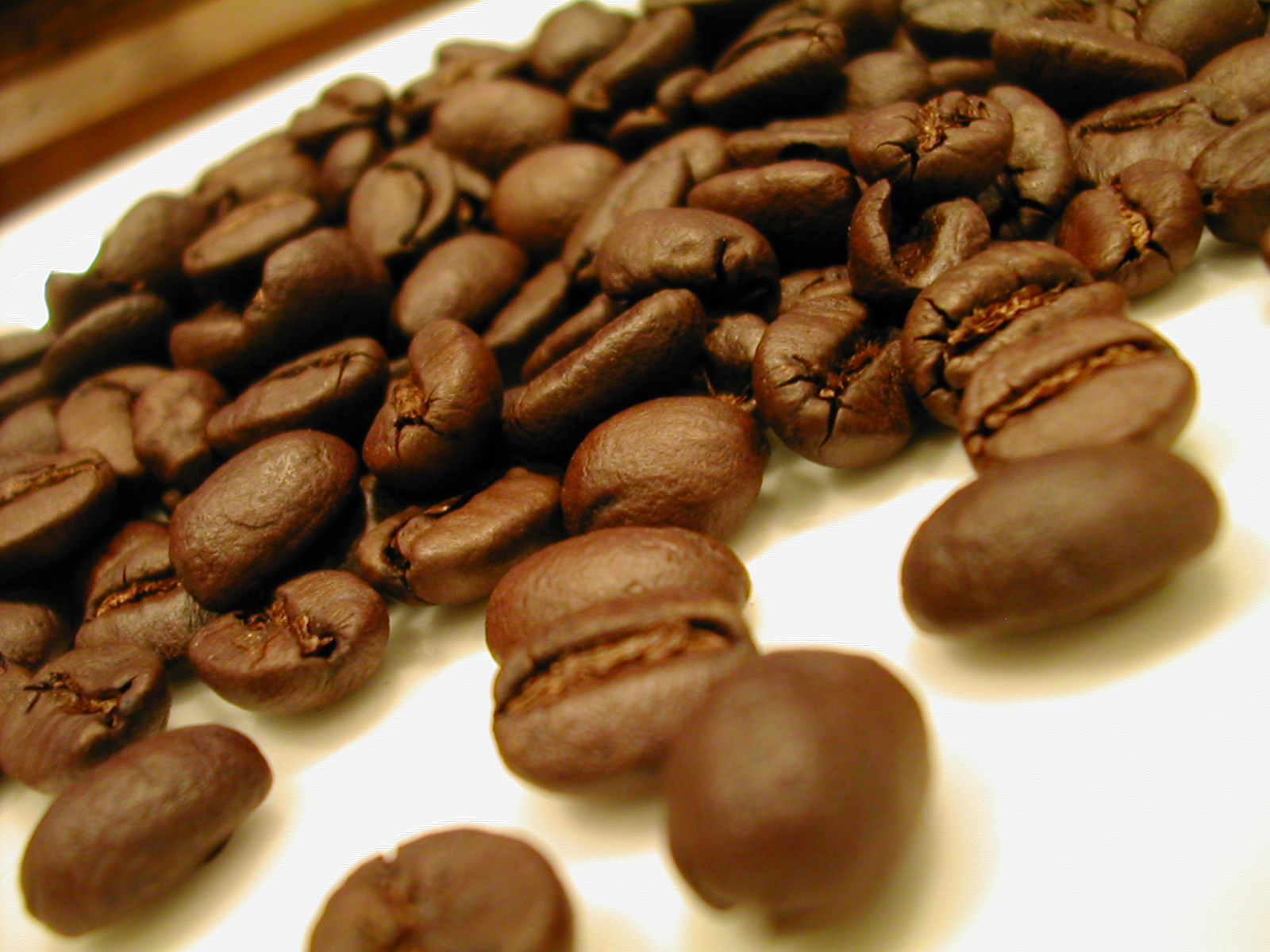 Seasonal coffee ☆ Yes set beans 200 g x 3 type