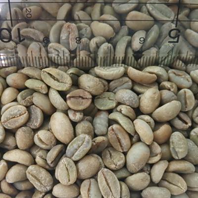 【コーヒー生豆】エチオピアシダモG-4/30kg【for Professional】(15kgx2)