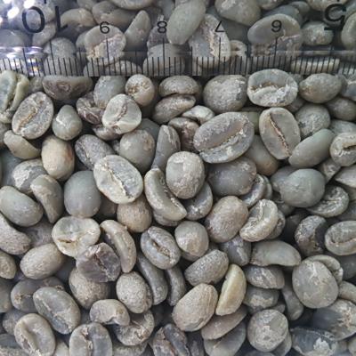 【コーヒー生豆】タンザニア#AA/30kg【for Professional】(15kgx2)