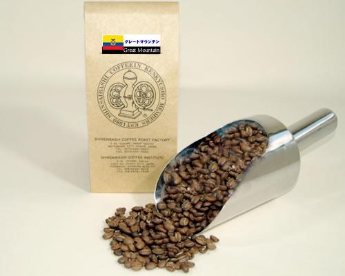 特別セール品 日本メーカー新品 焙煎コーヒー豆 グレートマウンテン エクアドル100g