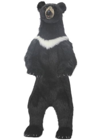 ハンサ HANSA ぬいぐるみツキノワグマ ブラックベア 黒クマ158cm