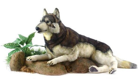 【HANSA】ぬいぐるみ森林オオカミ100cm