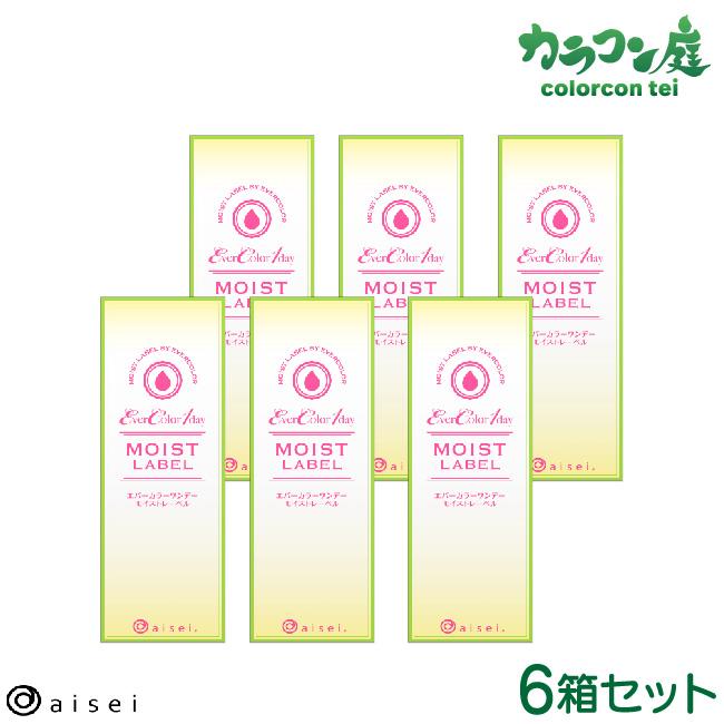 【最大2000円クーポン】 エバーカラーワンデー モイストレーベル10枚入り 6箱セット