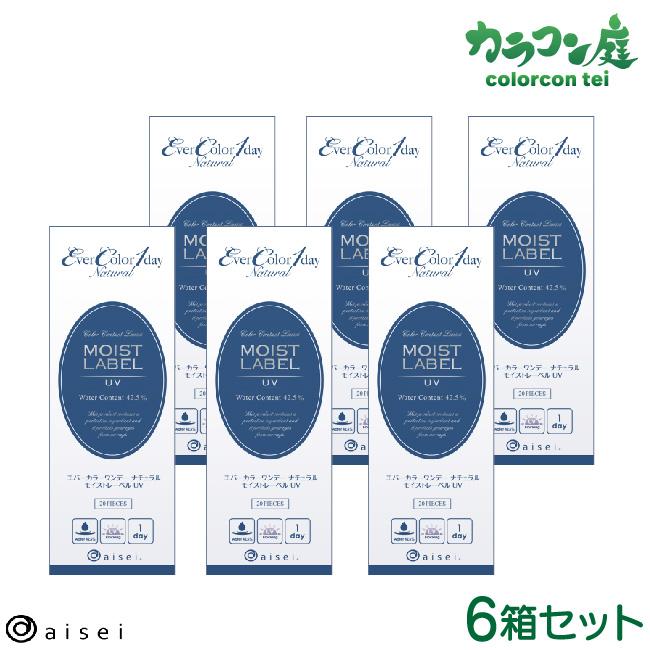 【最大2000円クーポン】 エバーカラーワンデーナチュラル モイストレーベルUV 20枚入り 6箱セット