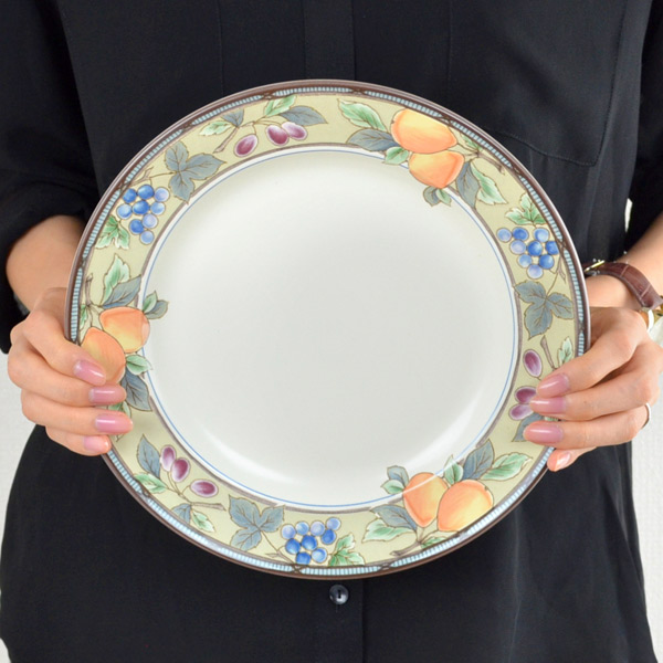 プレート 25cm 洋食器 ガーデンハーベスト 硬質陶器 6枚セット (  皿 食器 器 お皿 電子レンジ対応 食洗機対応 オーブン対応 大皿 レトロ オシャレ アンティーク )【4500円以上】