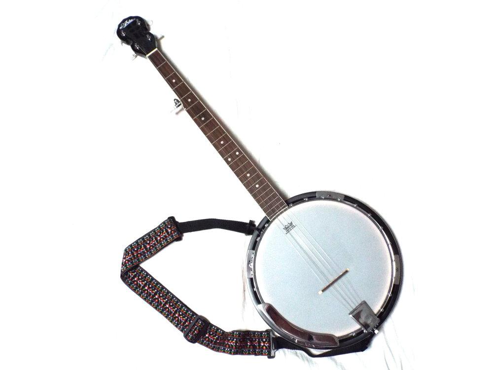 5弦バンジョー Aria Banjo SB-10 バンジョー専用ケース( RITTER社 RGP5-BJ BSG)付属