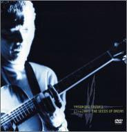 """中古 超歓迎された 鈴木康博 Live 2003""""THE 送料無料 一部地域を除く OF DVD SEEDS DREAM"""""""