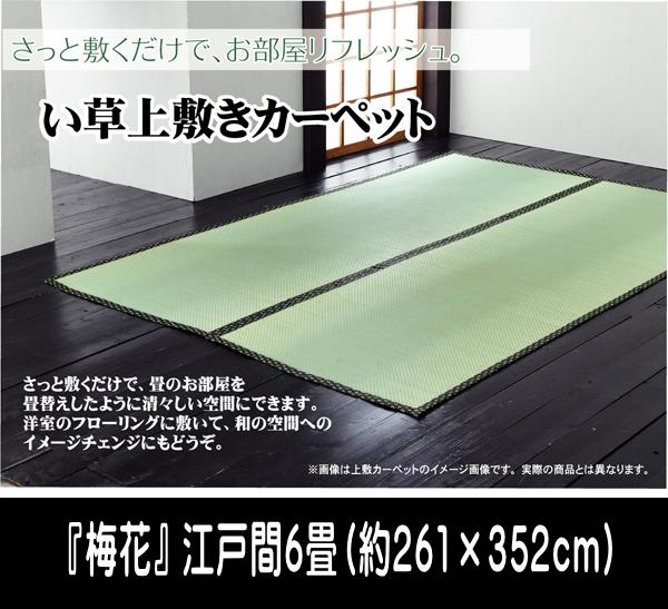 純国産 い草 上敷き カーペット 糸引織 『梅花』 江戸間6畳(約261×352cm)