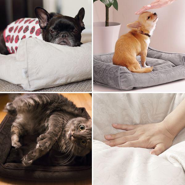 ペット ベッド ドルチェ Sサイズ タオル付き ペット用品 カドラー 小型 ソファタイプ