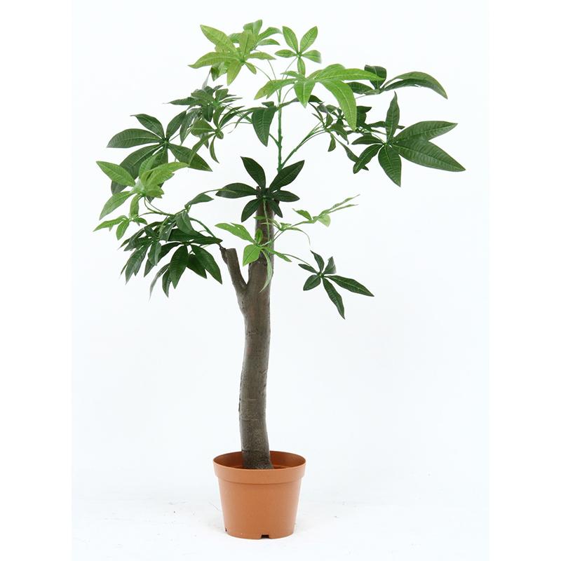 送料無料 観葉植物 パキラ 朴の木タイプ 人工観葉植物 フェイクグリーン 造花 引っ越し祝い 新築祝い おしゃれ かわいい インテリア 雑貨