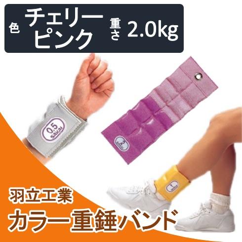 カラー重錘バンド チェリーピンク 2kg 酒井医療【送料無料】