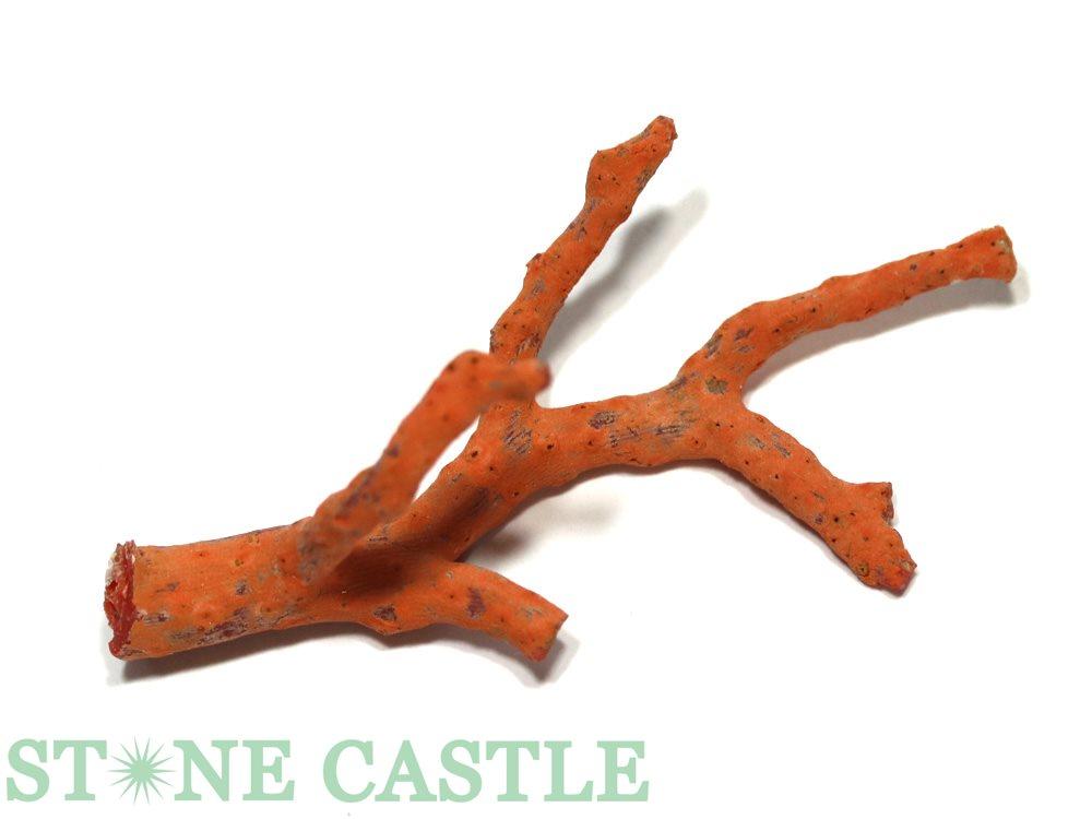 セール特別価格 赤珊瑚 原木 高級一点物 天然石 パワーストーン 幸福 子宝 No.19 マーケット アクセサリー スーパーセール 繁栄 ☆原木一点物☆ 富 天然赤珊瑚