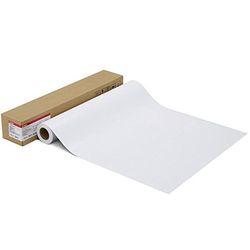 キヤノン LFM-SGLU/17/260 写真用紙 微粒面光沢 ラスター(1108C004) 取り寄せ商品