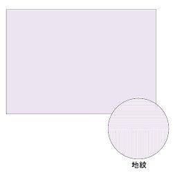 ヒサゴ コピー偽造予防用紙浮き文字タイプA3片面 600枚入り BP2111Z 取り寄せ商品