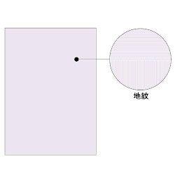 ヒサゴ コピー偽造予防用紙浮き文字タイプA4両面 1000枚入り BP2110Z 取り寄せ商品