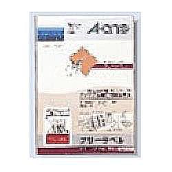 エーワン 06196 フリーラベル(ワイド) 一般タイプ A4判(手書用) 取り寄せ商品