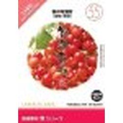 イメージランド 創造素材 食(55)春の旬食材(果物・野菜)(対応OS:WIN&MAC)(935699) 取り寄せ商品