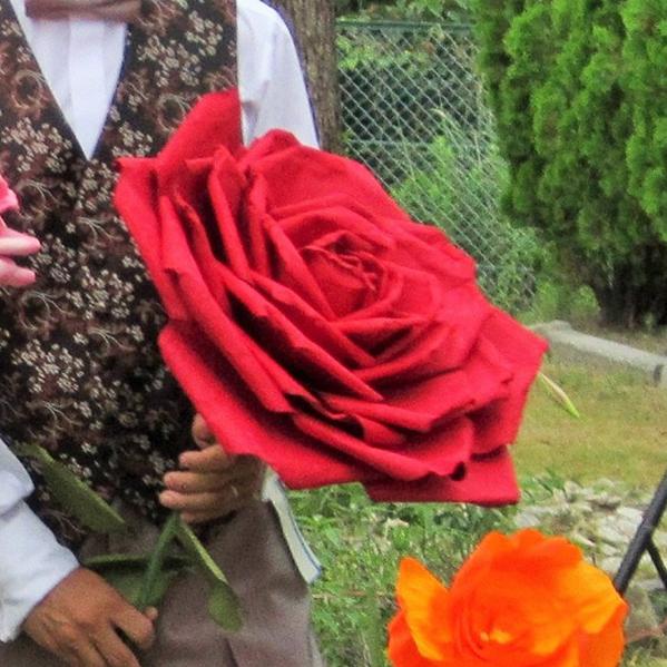 ヴィクトリーローズ レッドL 演出 フラワー ビッグフラワー 造花 アイテム 結婚式 二次会 パーティー ウェディング