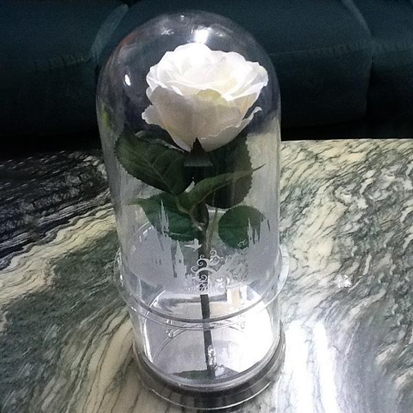 ファンタジードーム(水通電タイプ) 演出 アイテム 結婚式 二次会 パーティー ウェディング