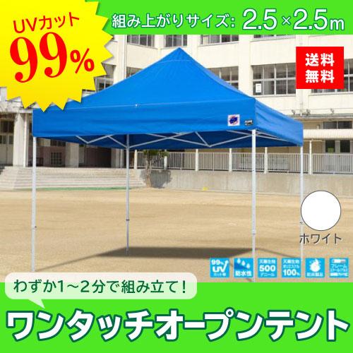 メーカー直送 E-ZUP イージーアップ イージーアップテント 組み立てテント デラックス(スチールタイプ) [DX25-17WH] 2.5m×2.5m 天幕色:白 ホワイト 防水 防炎 紫外線カット99%