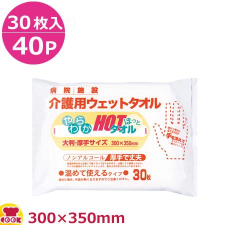 大富士製紙 やわらかほっとタオル300×350mm 30枚入×40P(送料無料、代引不可)