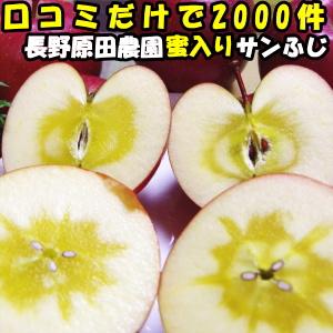りんご 蜜入り サンふじ 口コミ2000件 噂の 蜜入りりんご サンフジ 長野 信州 原田農園 10kg 24~46玉 訳あり 家庭用 送料無料