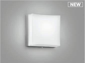 【最安値挑戦中!最大25倍】コイズミ照明 AU50615 アウトドアライト LED一体型 非調光 昼白色 防雨型 化粧ネジ式 シルバー