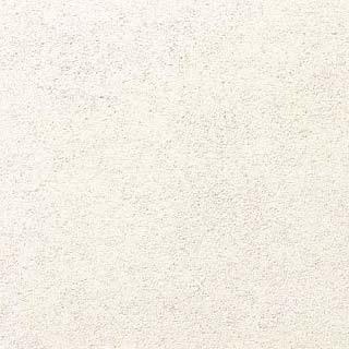 【最安値挑戦中!最大24倍】LIXIL 【ECO-3031T/NJ9NN(雪白) 22枚入/ケース】303角片面小端仕上げ ニュージュラク エコカラット Fシリーズ [♪]