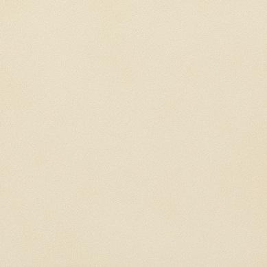 【最大44倍お買い物マラソン】LIXIL 【ECP-3031T/NTC2FN(ベージュ)22枚入/ケース】 303角片面小端仕上げ(フラット) ニュートランス エコカラットプラス [♪【追加送料あり】]