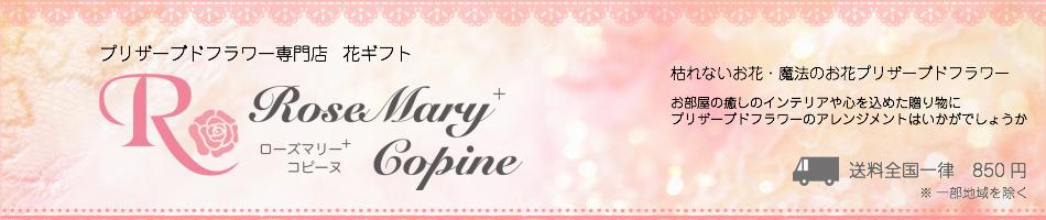 花ギフト ローズマリーコピーヌ:ローズマリーコピーヌです。私達はお客様との信頼を一番大切にしています。