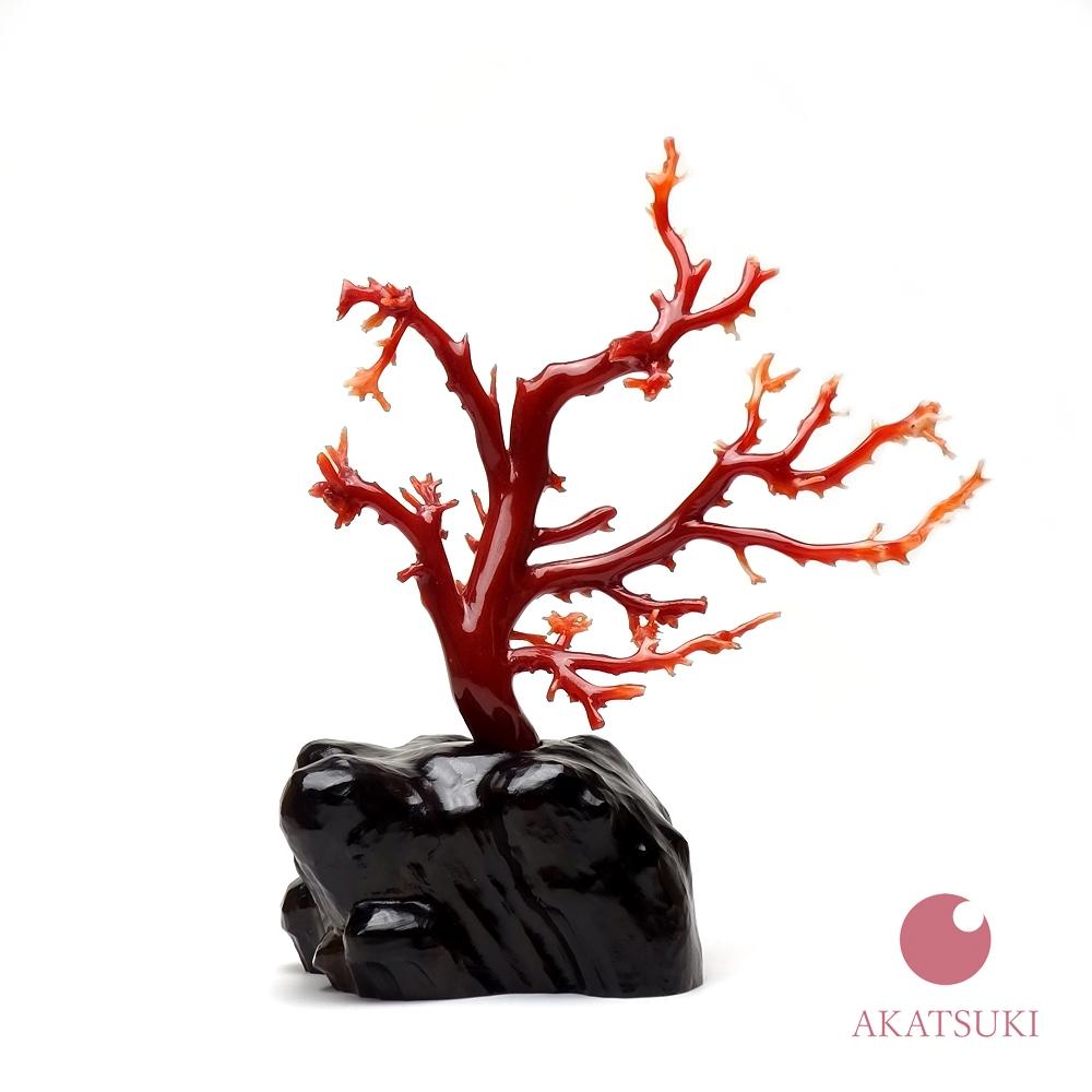 日本産赤珊瑚 拝見 3月の誕生石 お守り さんご サンゴ coral 結婚35周年 珊瑚婚 出産祝い 還暦祝 血赤珊瑚 濃い赤 オックスブラッド ジュエリー アクセサリー 女性用 レディース
