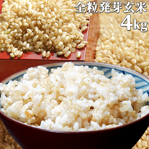 5%還元 大分県産 無洗米 手作り発芽玄米 4kg(1kg真空パック×4袋)準無農薬(減農薬) スタリオン日田【送料無料】