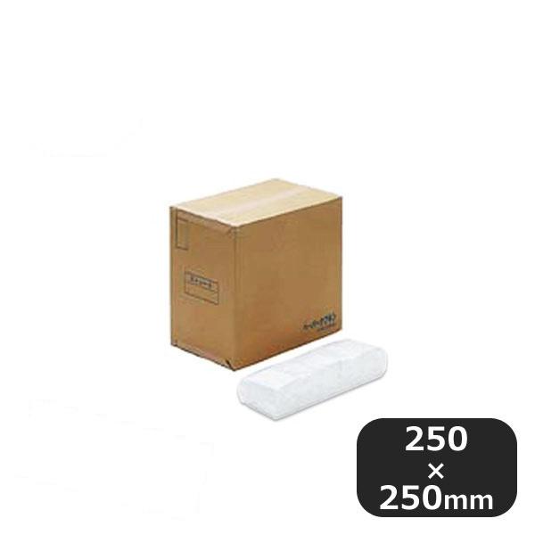 【送料無料】6ッ折ナフキン白無地 平型100入×100束(377255)業務用