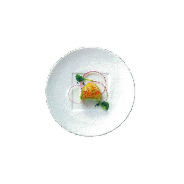 【送料無料】ディナー皿 27cm 6枚 カネスズ クロス(17800402)