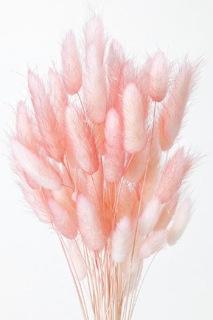 래그 테라스 투 톤 핑크 (약 15g 들어가고)