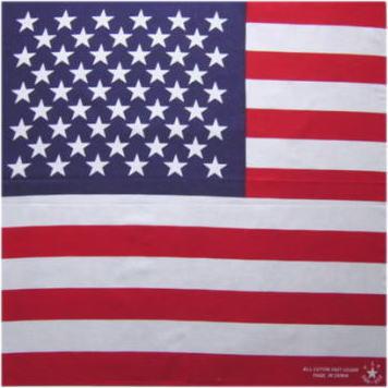 ★☆話題のアメリカ大統領!アメリカ国民を天国へか? ★アメリカ国旗★U.S.A「綿100%・日本製」【コットンハウス】