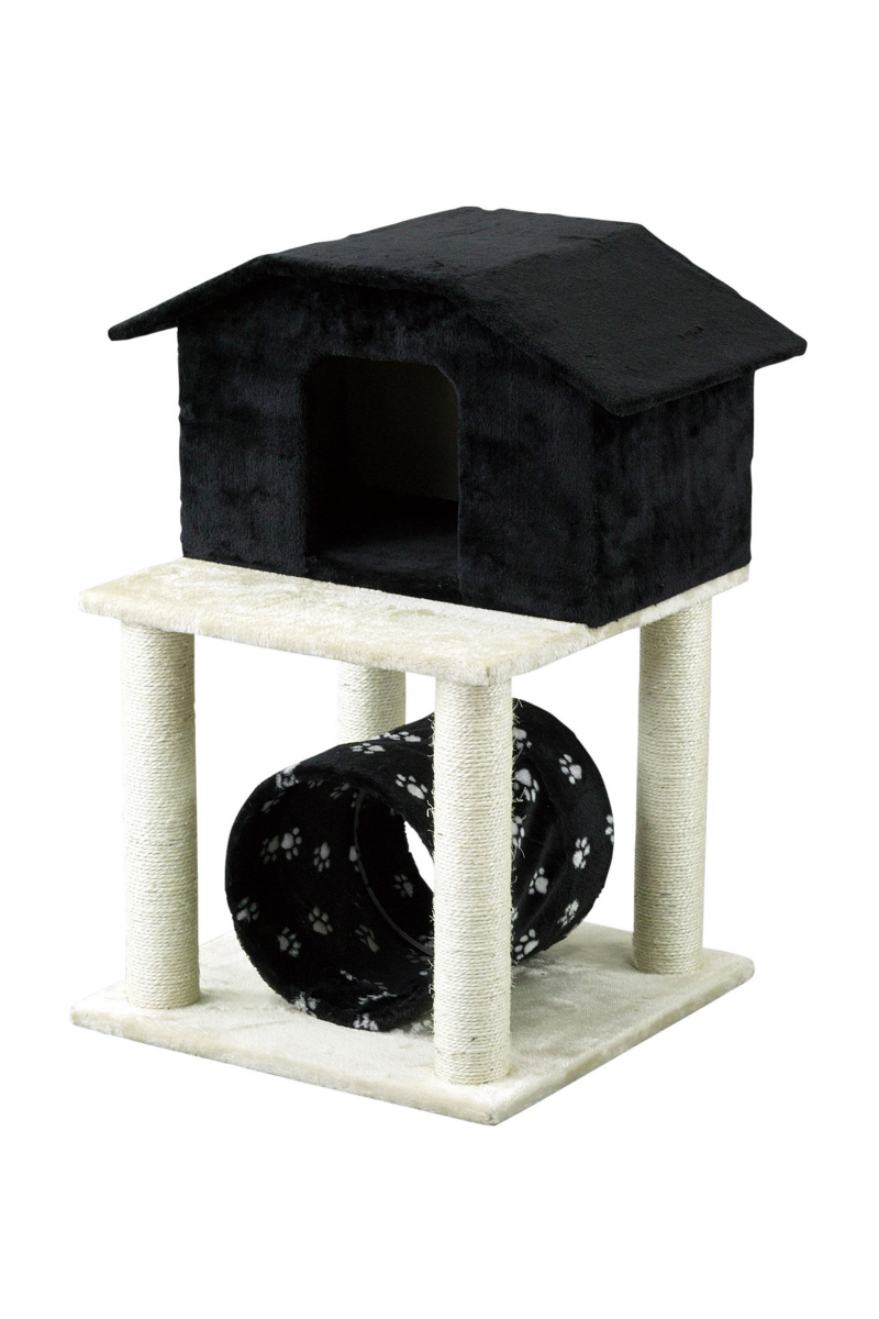 PAW-PAW CAT CONDO