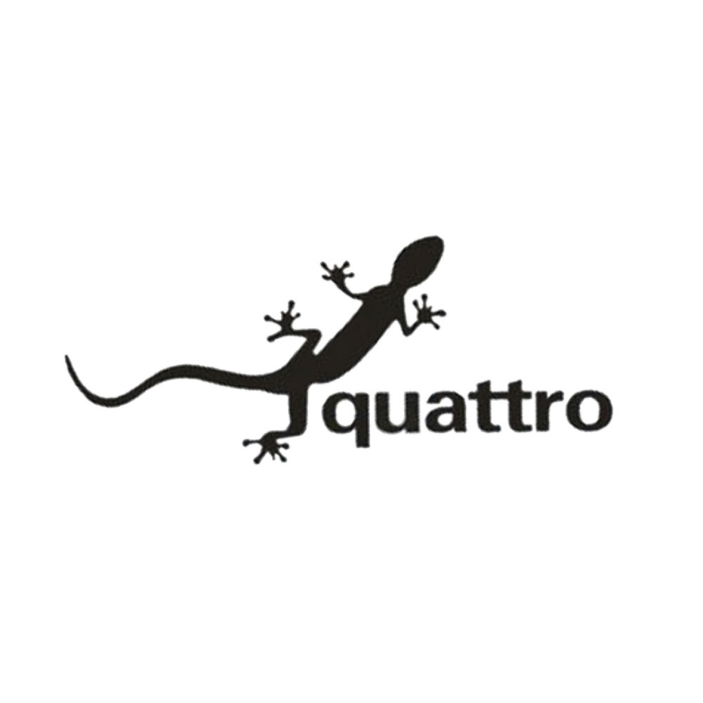 貼り付けるだけのカーステッカー メール便対応可能 リザードクアトロ とかげ 爬虫類 クロカン ドレスアップ 注目ブランド 宅送 外装 ステッカー カスタム アウトドア 車