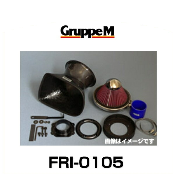 GruppeM グループエム FRI-0105 RAM AIR SYSTEM ラムエアシステム BMW用