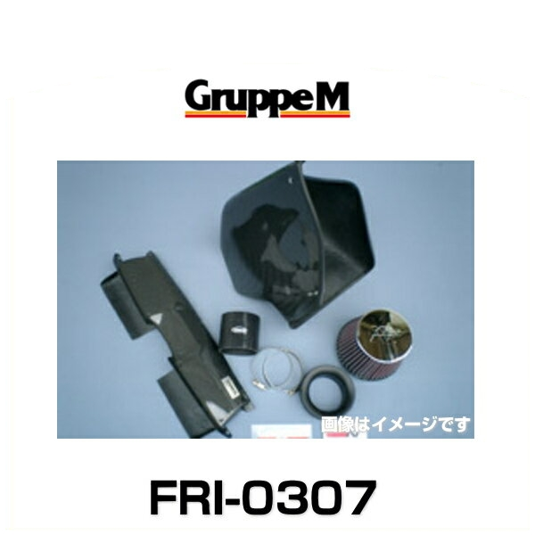 GruppeM グループエム FRI-0307 RAM AIR SYSTEM ラムエアシステム BMW用