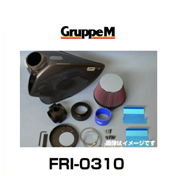 GruppeM グループエム FRI-0310 RAM AIR SYSTEM ラムエアシステム BMW用