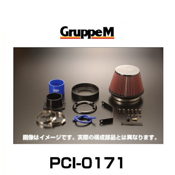 GruppeM グループエム PCI-0171 POWER CLEANER パワークリーナー TT 8N(A4)