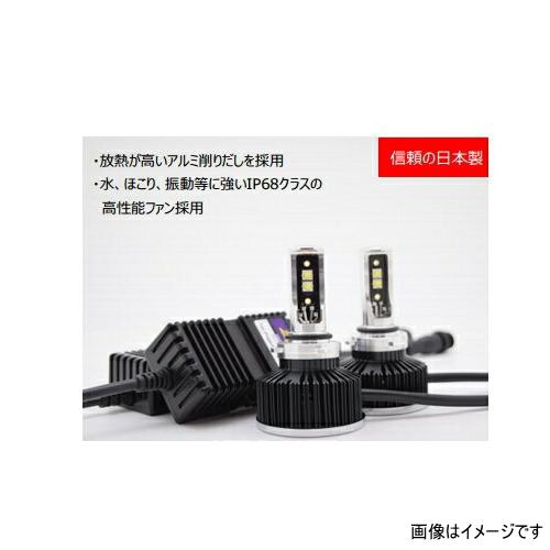 日本ライティング ZRAY RH8 トヨタ C-HR用LEDヘッドライトキット HIR2 6500K 6000ルーメン