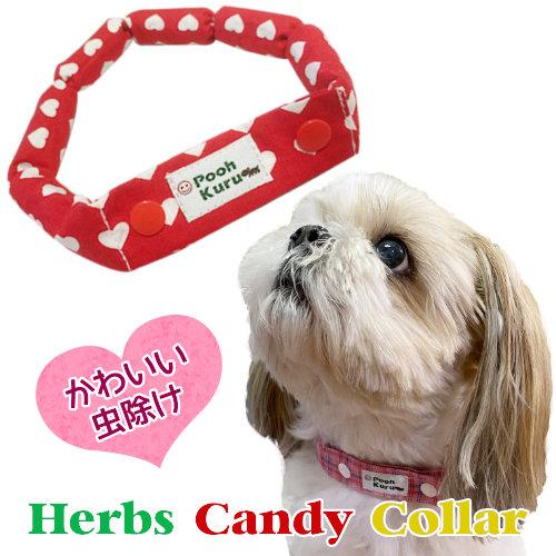 キャンディの様に可愛い虫よけ 送料無料 ハーブ カラー 首輪 キャンディ型 オーガニック 天然 数量は多 お散歩に 虫よけ オーガニックハーブ 優先配送 虫除け