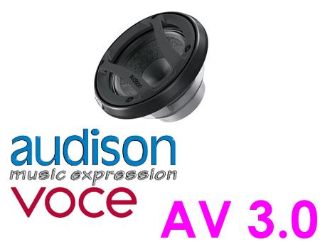 AUDISON オーディソン AV 308cmミッドレンジ(1ペア)